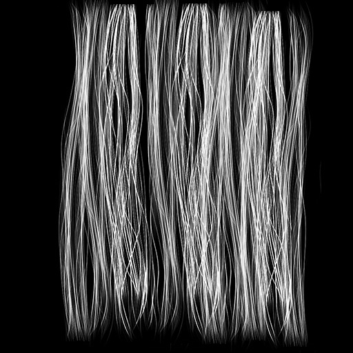 hairstrands